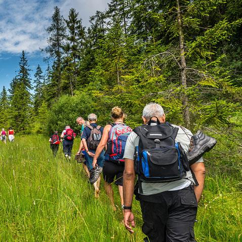 oostenrijk-wildschoenau-wandelen